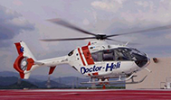 Seirei Hamamatsu General Hospital helicopter